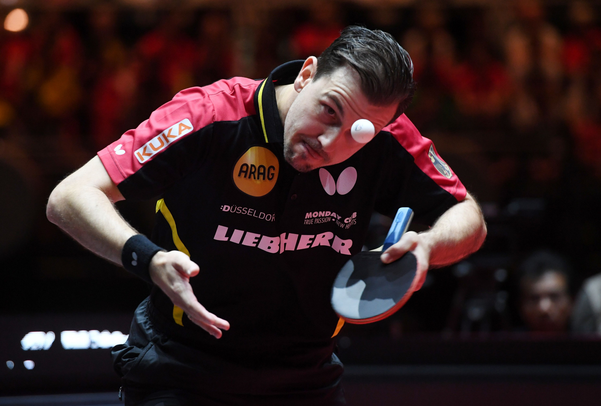Timo Boll is the big surviving German hope in the men's singles draw ©Getty Images