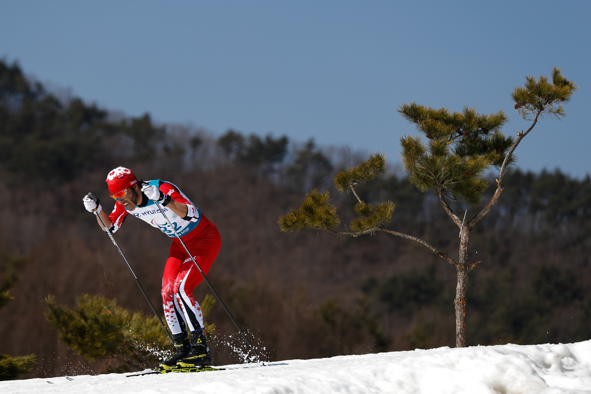 Record breaking cross-country skier Brian McKeever is also shortlisted ©Getty Images