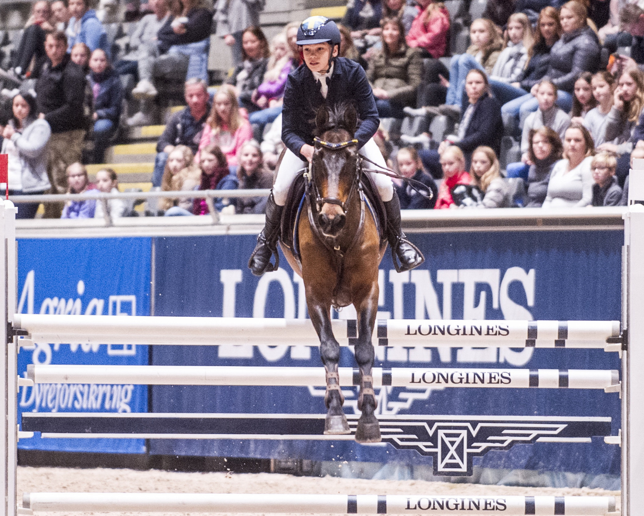 FEI announce host cities for youth equestrian events
