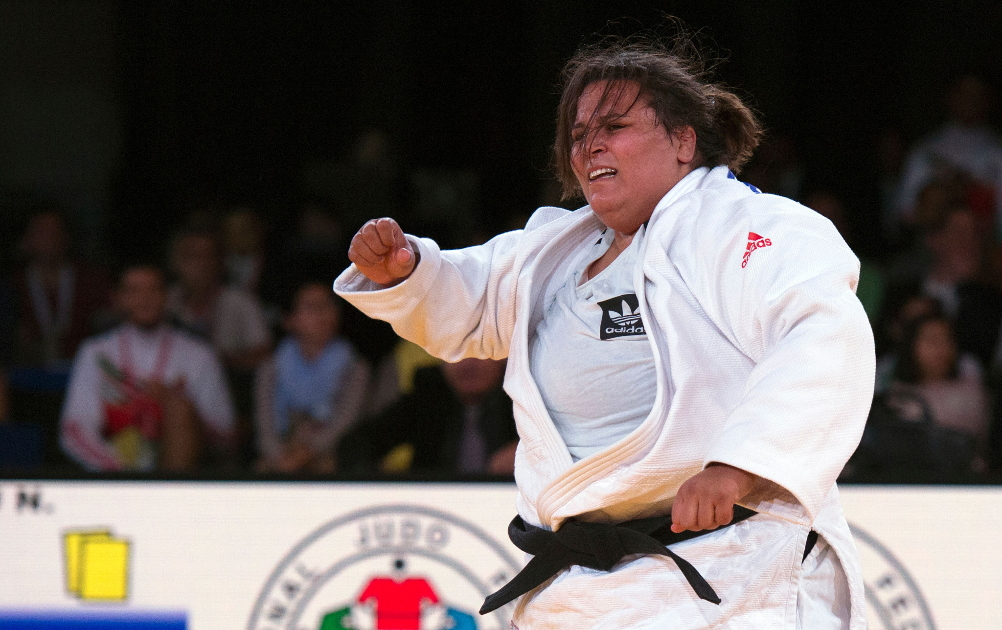 Two gold medals for host nation on opening day of African Judo Championships in Tunis