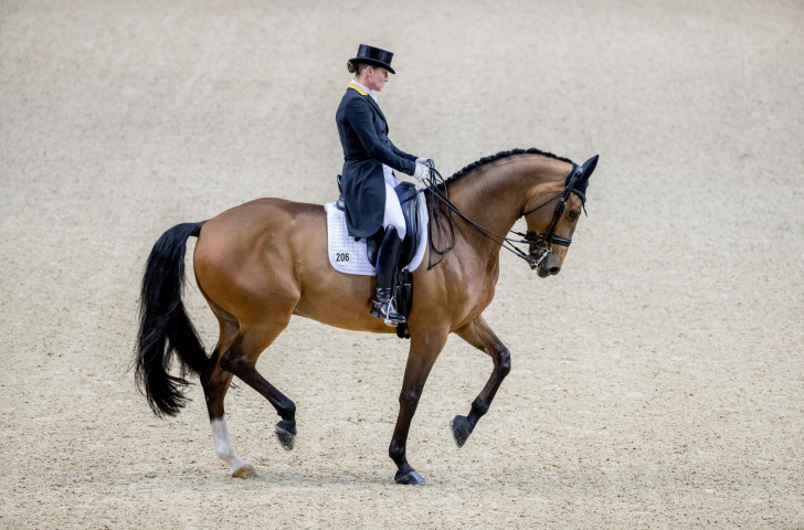 Isabell Werth, defending champion in the FEI World Cup Dressage Final in Paris, goes into tomorrow's Freestyle competition in second place behind Laura Graves of the United States ©Getty Images