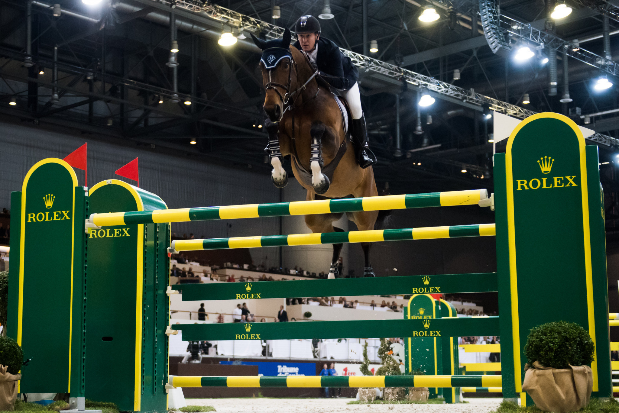HH Azur, the mare ridden by America's McLain Ward, has been voted the World's Best Jumping Horse by the FEI ©Getty Images
