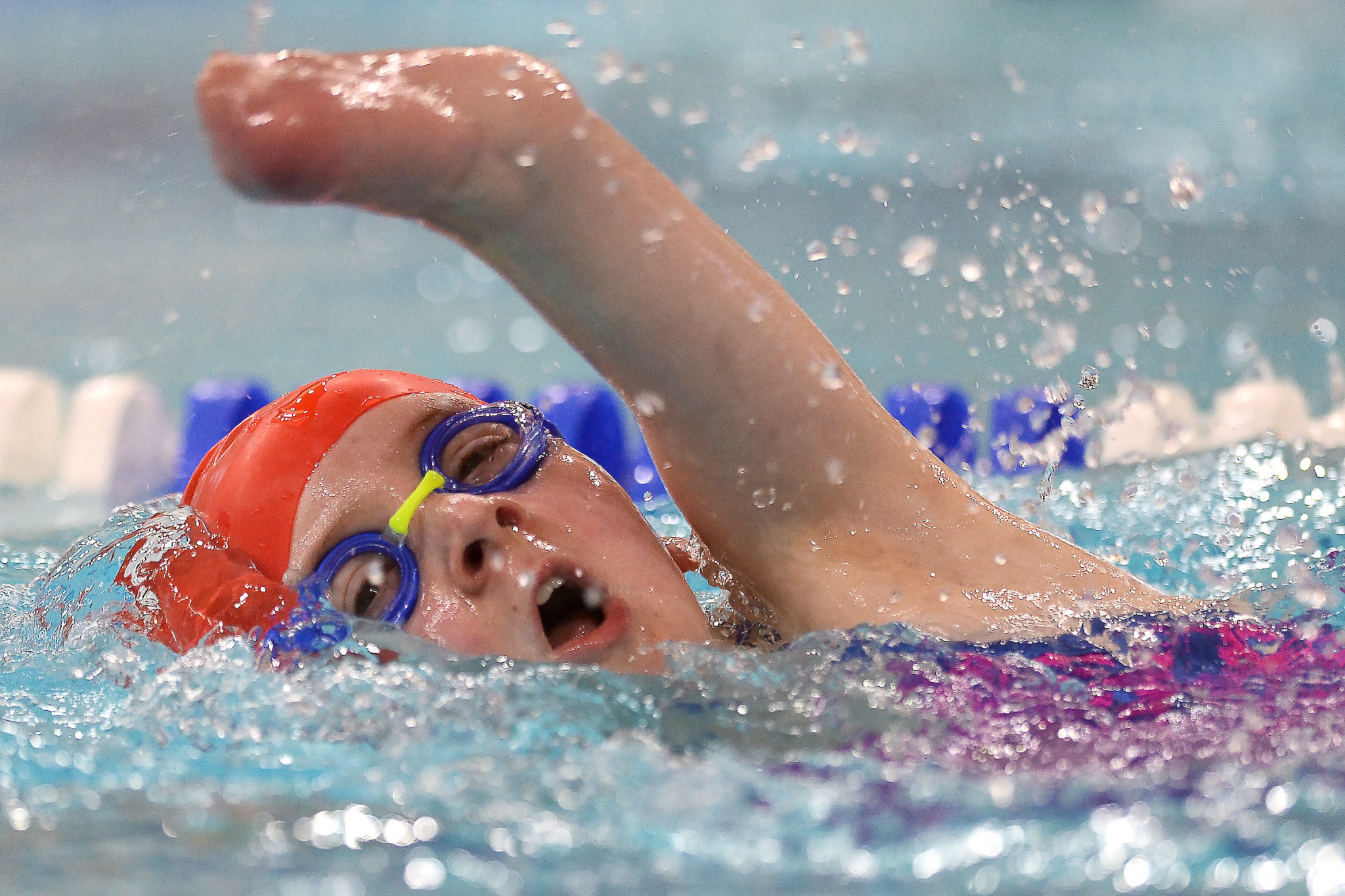 Around 100 swimmers took part at the event in Southampton ©EFDS