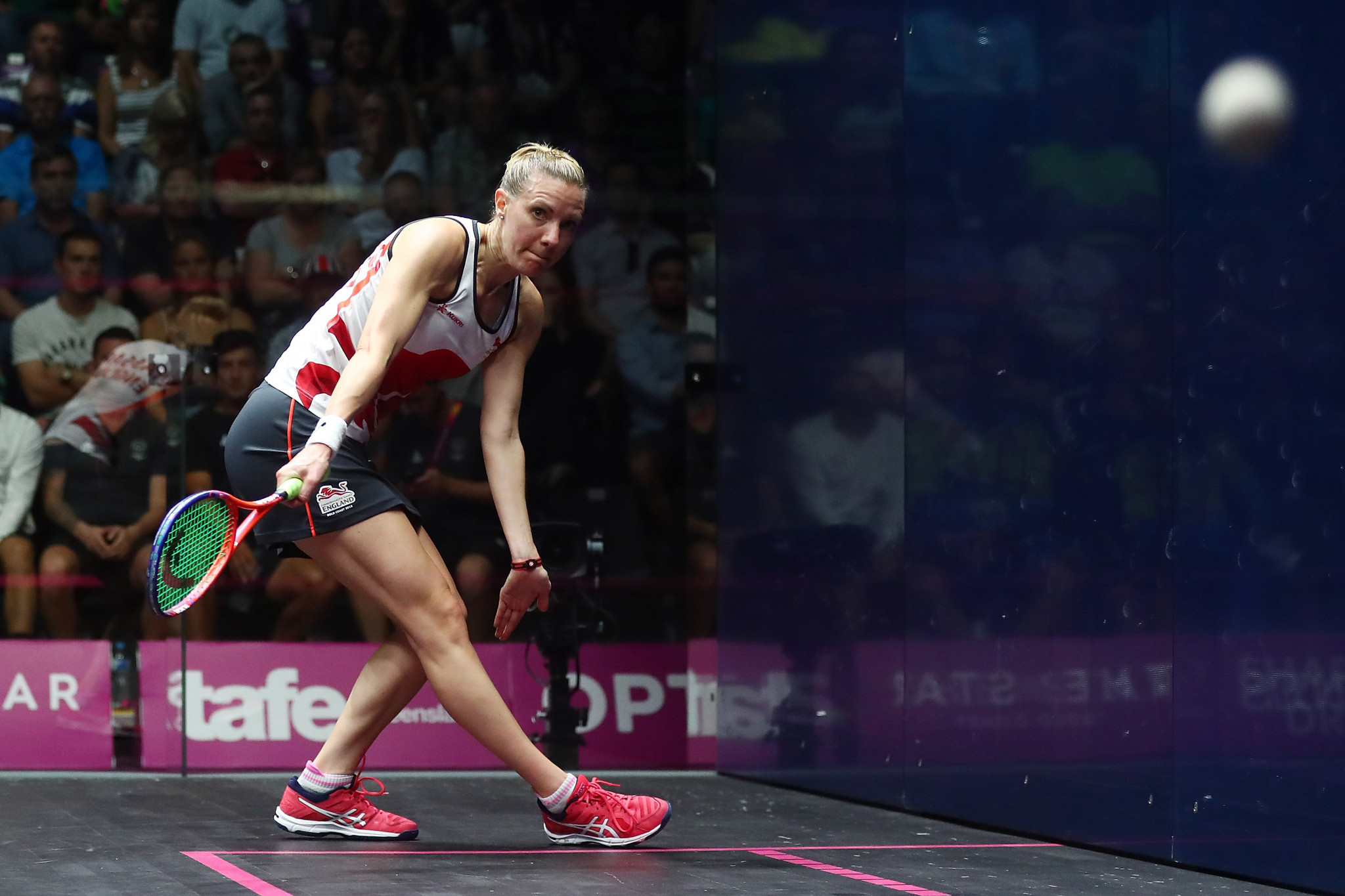 Massaro looking for third straight PSA World Series Finals title in Dubai