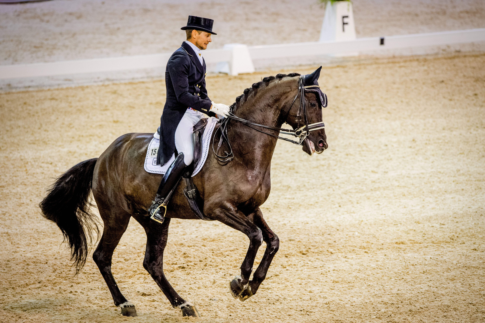 Hosts triumph in FEI Dressage Nations Cup event in Rotterdam