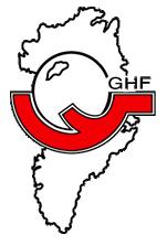 Argentina end run of hosts Greenland at Pan American Handball Championships
