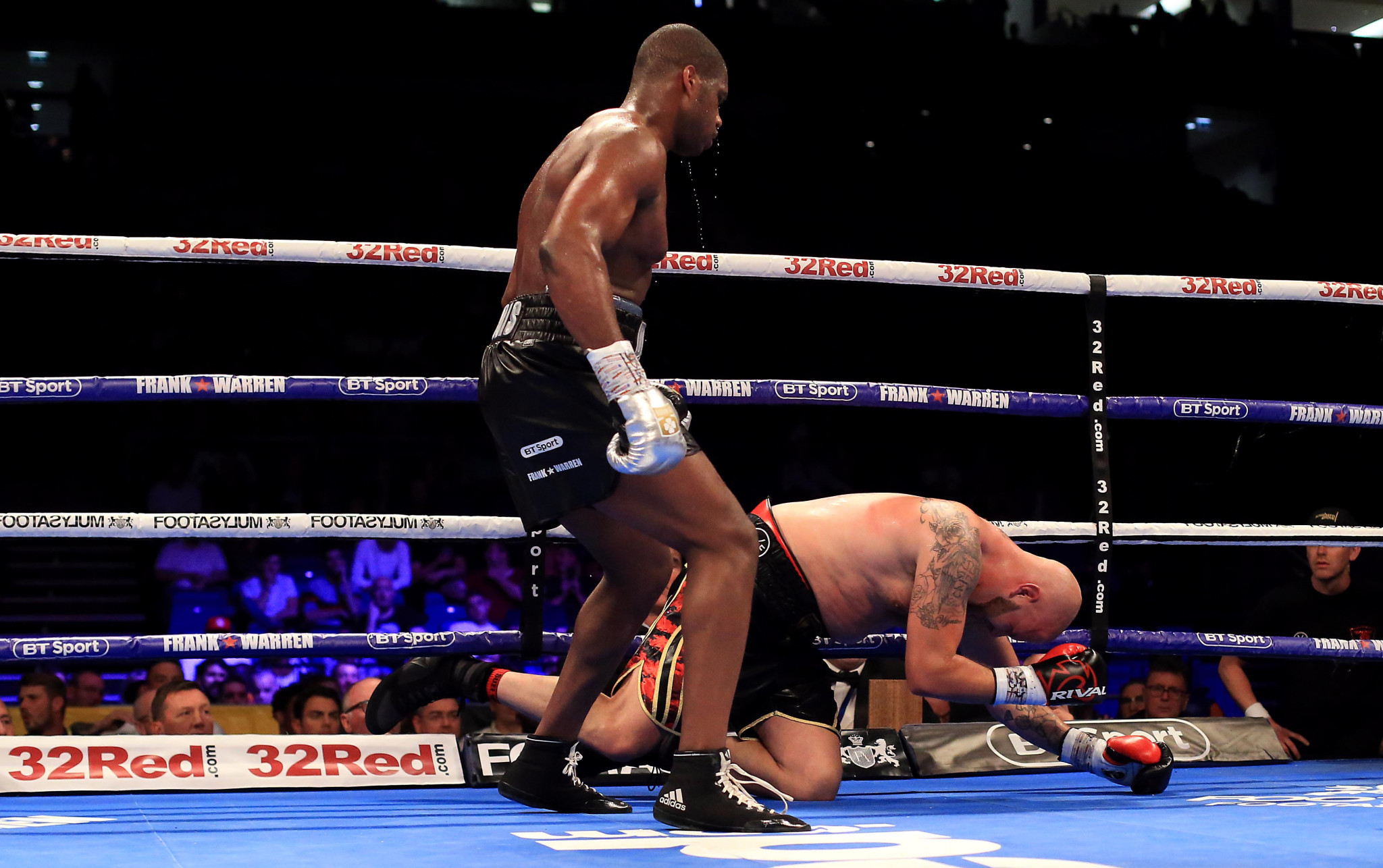 Daniel Dubois, pictured above completing a knockout victory, is predicted to be one of the best prospects in boxing ©Getty Images