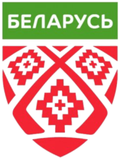 Belarusian Ice Hockey Association elect new chairman after relegation from top division
