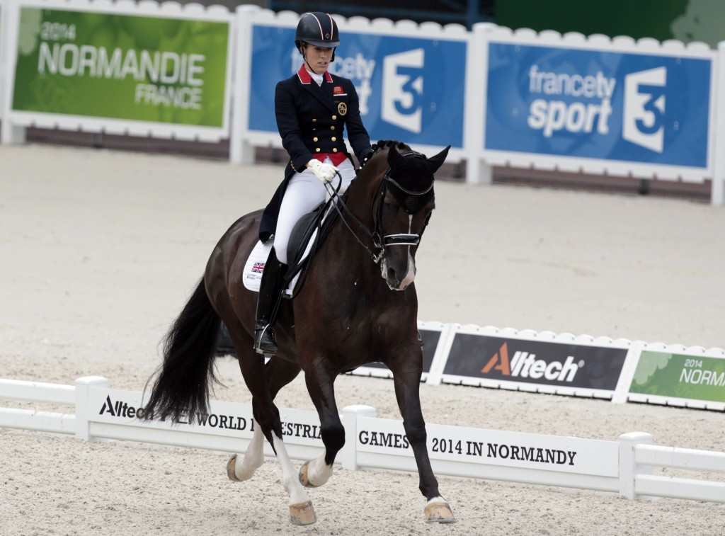 The World Equestrian Games looks set to undergo a series of changes