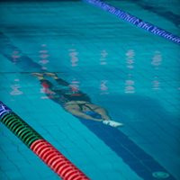 Russia claim three gold medals on day four of World Finswimming Championships