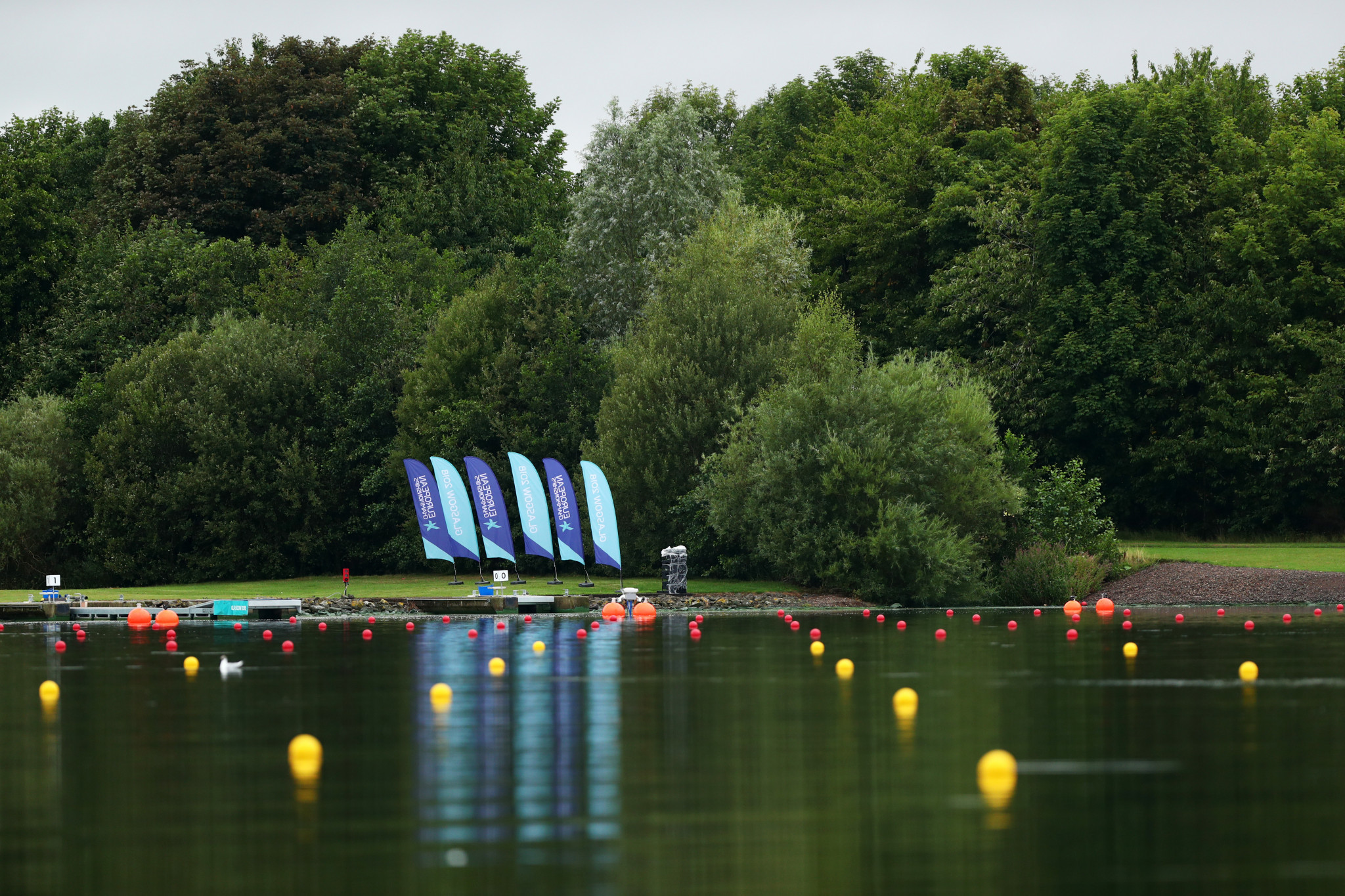 Mixed fortunes for favourites in rowing heats at European Championships in Glasgow