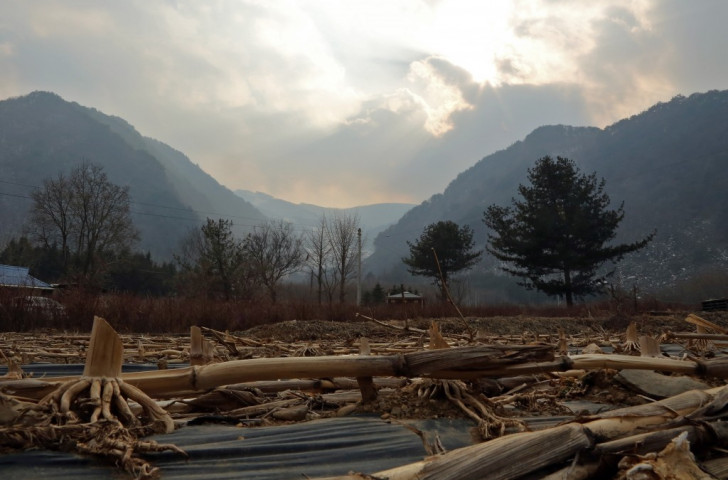 "Korean environmental group blast Pyeongchang 2018 for damage to ""sacred"" forest"