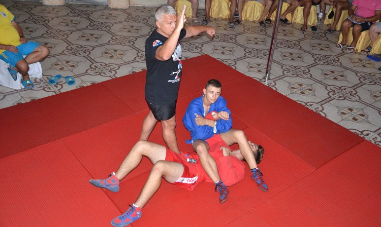 Ukraine hosts sambo seminar for referees and coaches