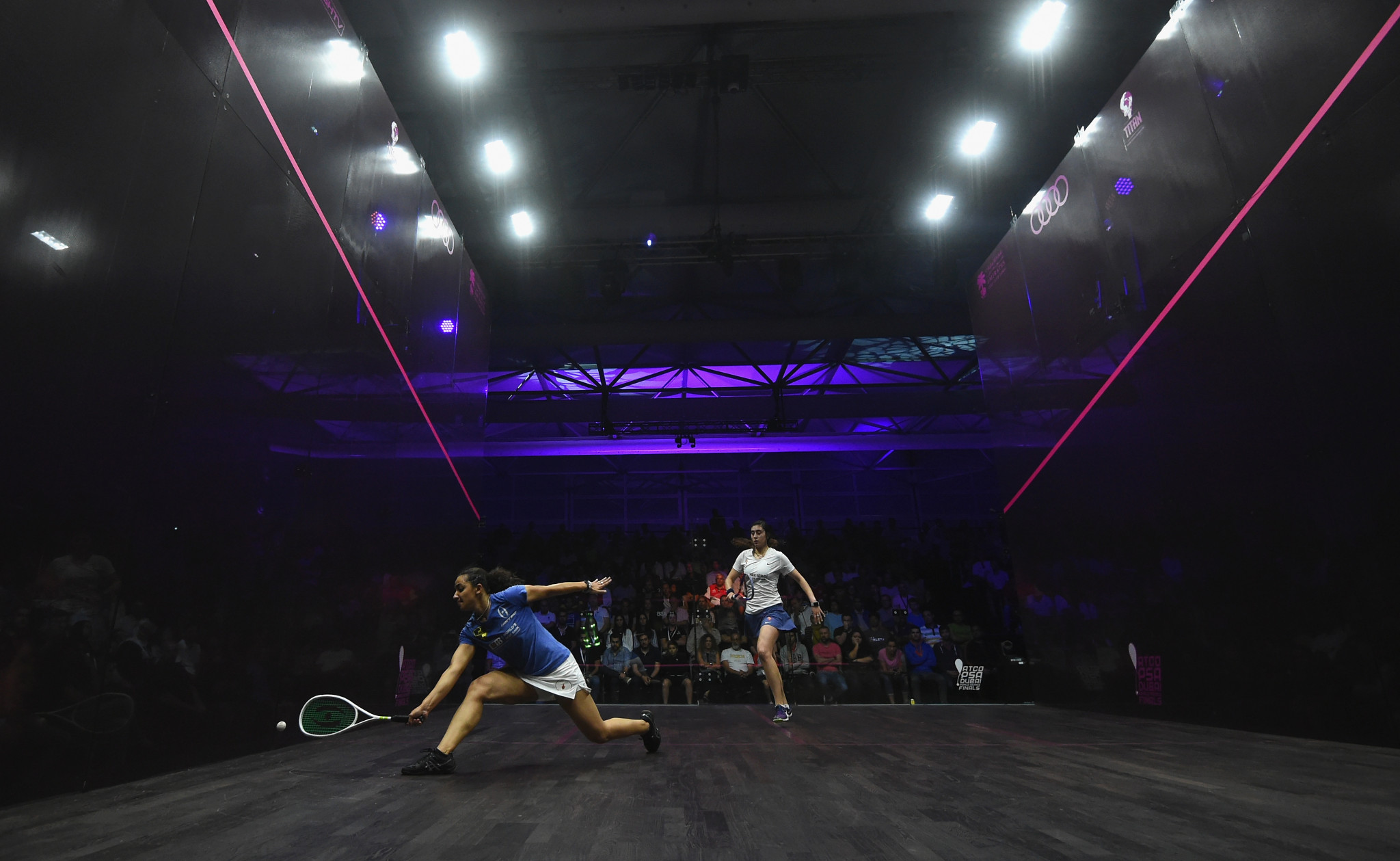 Professional Squash Association pen deal with Sports Data Labs