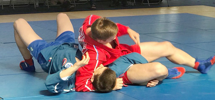 Sambo was demonstrated at the TAFISA Games in The Netherlands ©FIAS