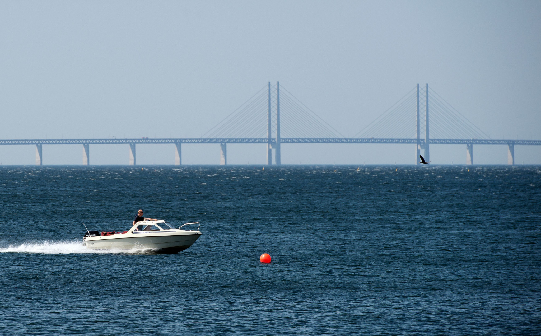 Sweden and Denamrk, on both sides of the Öresund Bridge, will both aim to benefit from the tournament ©WFDF
