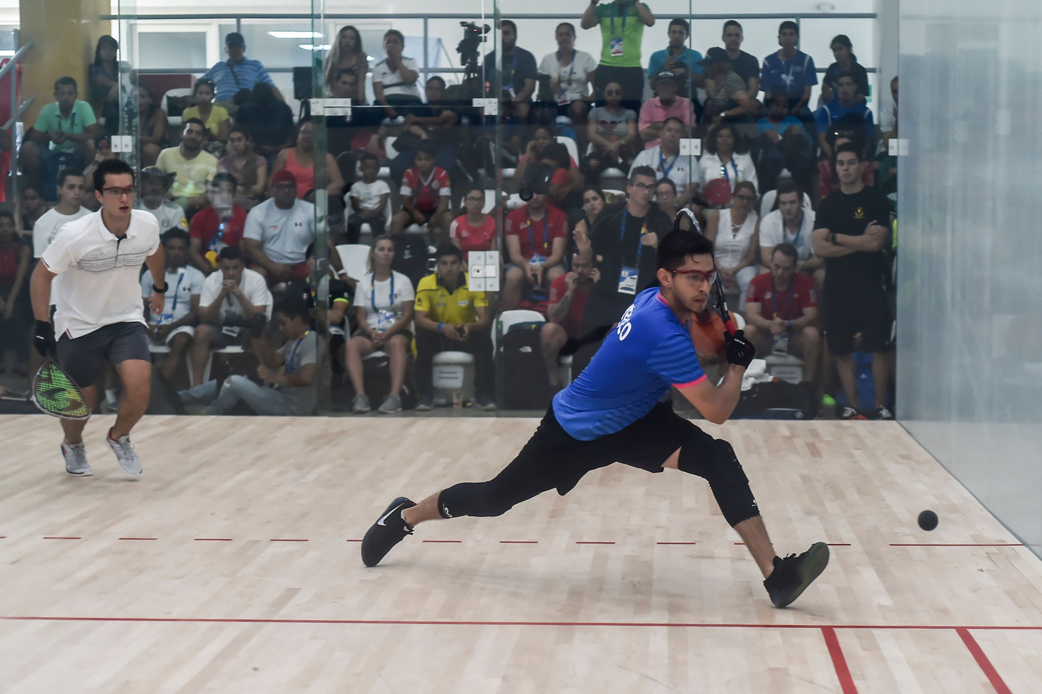 Top seed Horn beaten in Racquetball World Championships semi-final