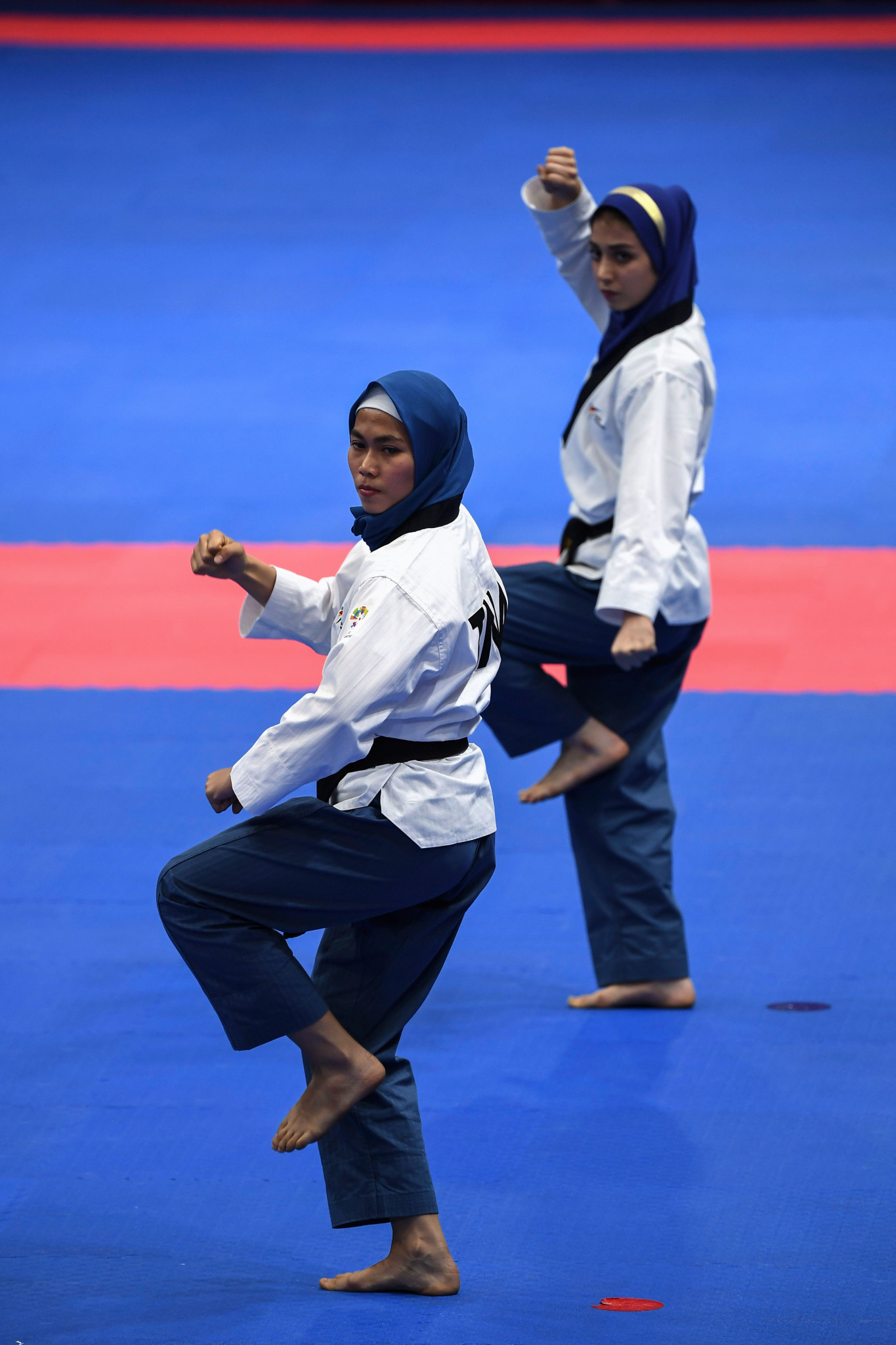 The coach appointed will work at the World Poomsae Championships ©Getty Images