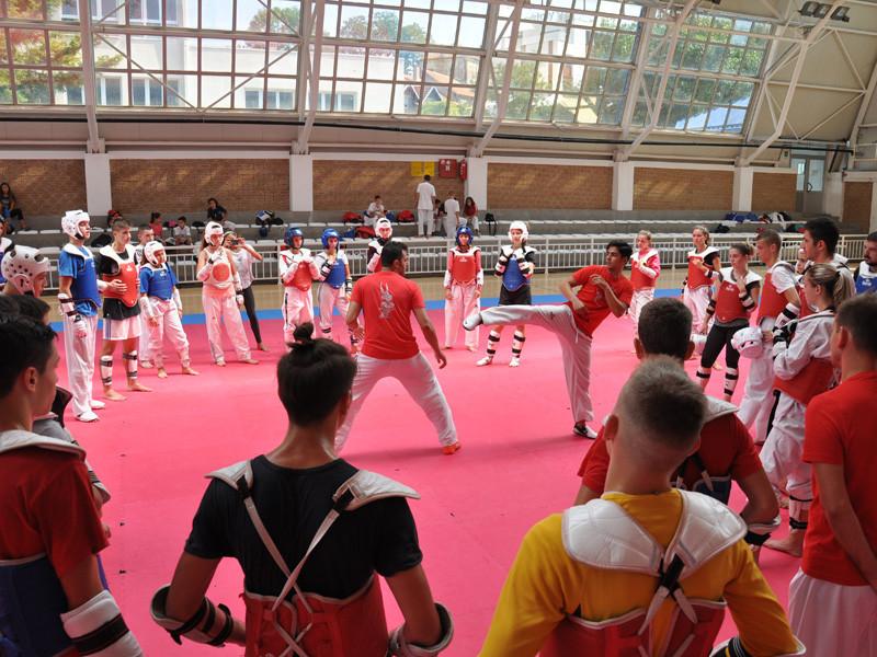 Iranian stars host taekwondo camp in Serbia