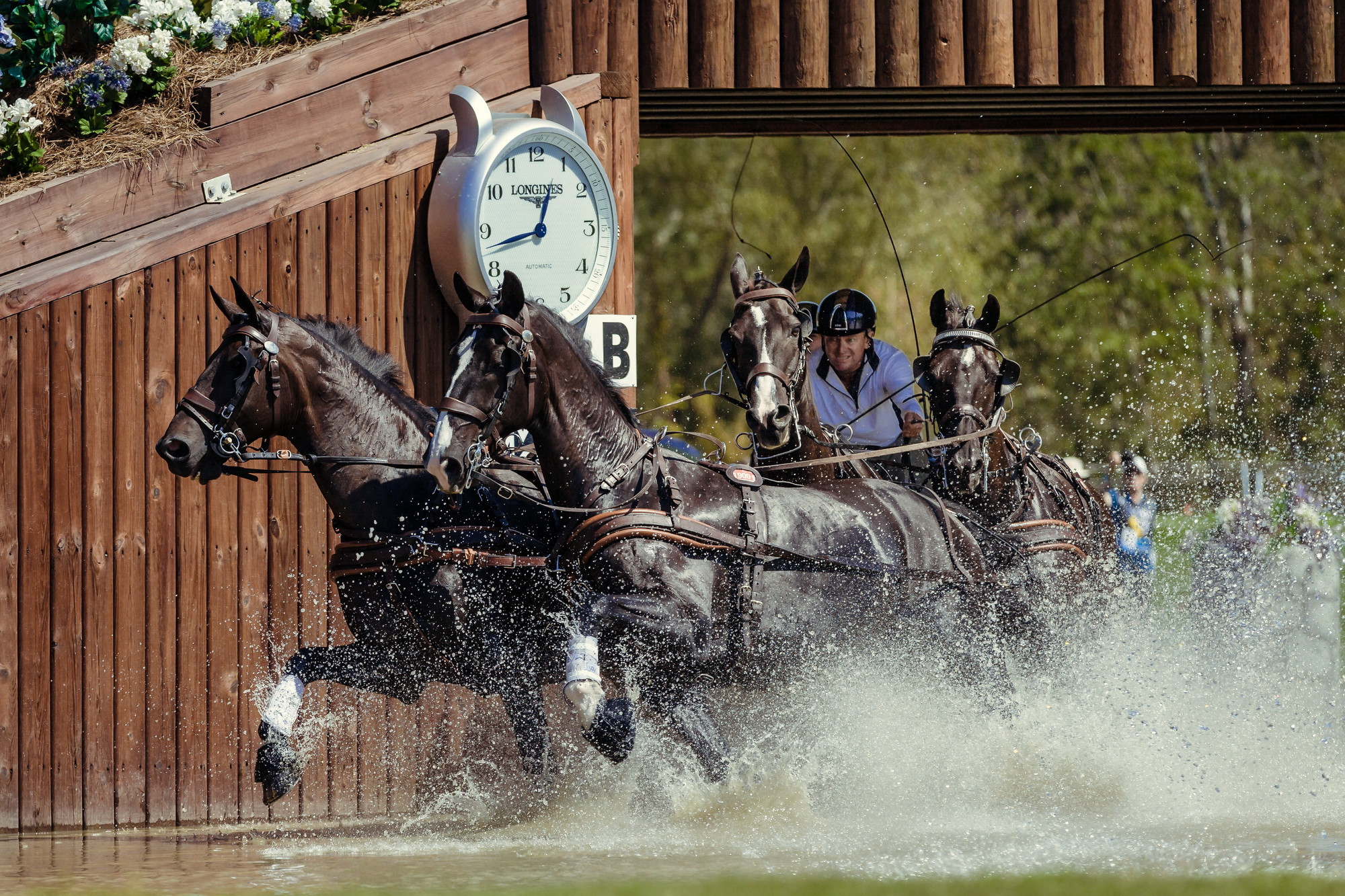 Brakeless Exell excels to maintain driving lead at FEI World Equestrian Games