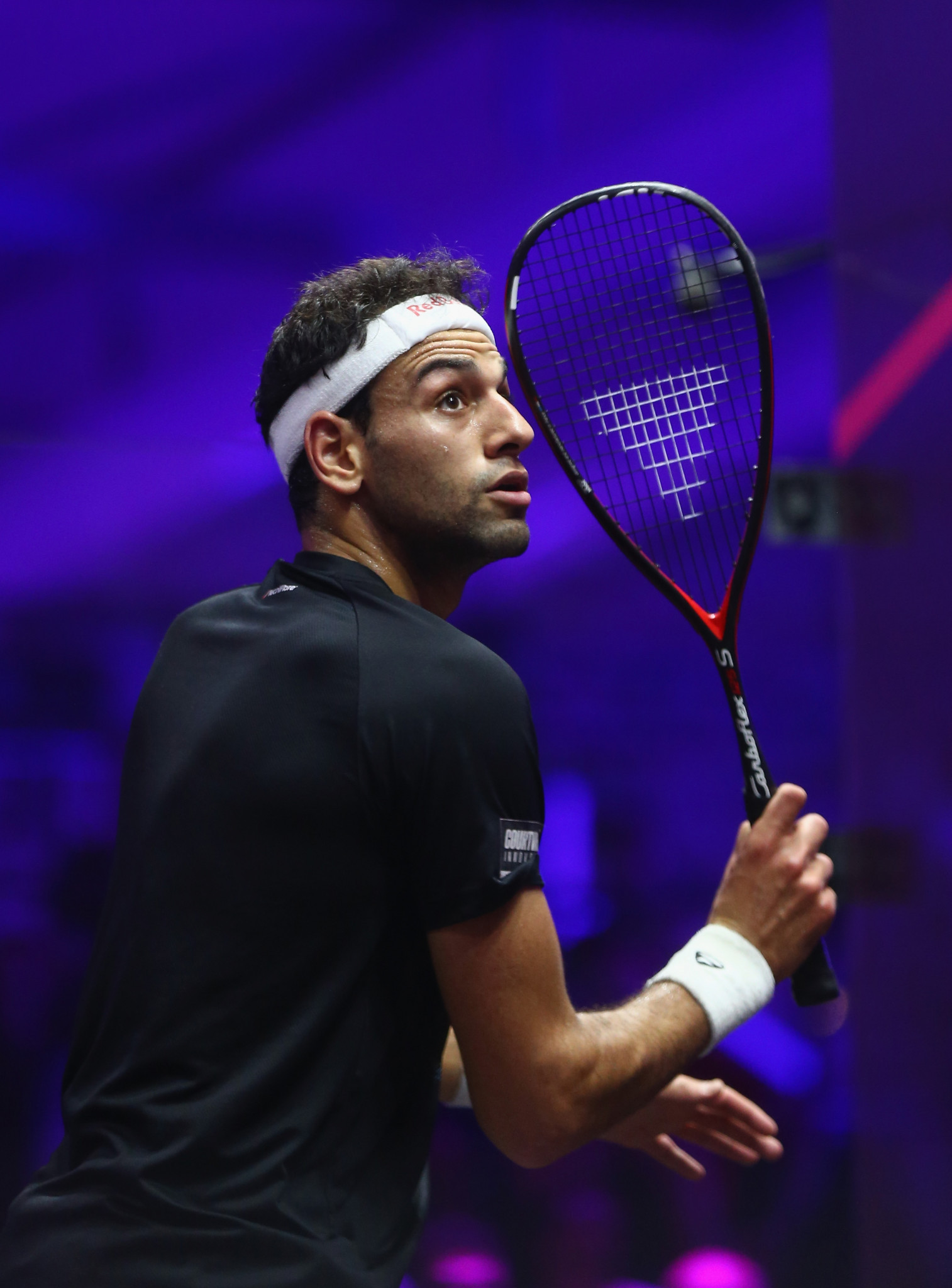 Elshorbagy and Perry make winning starts to defence of Oracle NetSuite Open squash titles in San Francisco