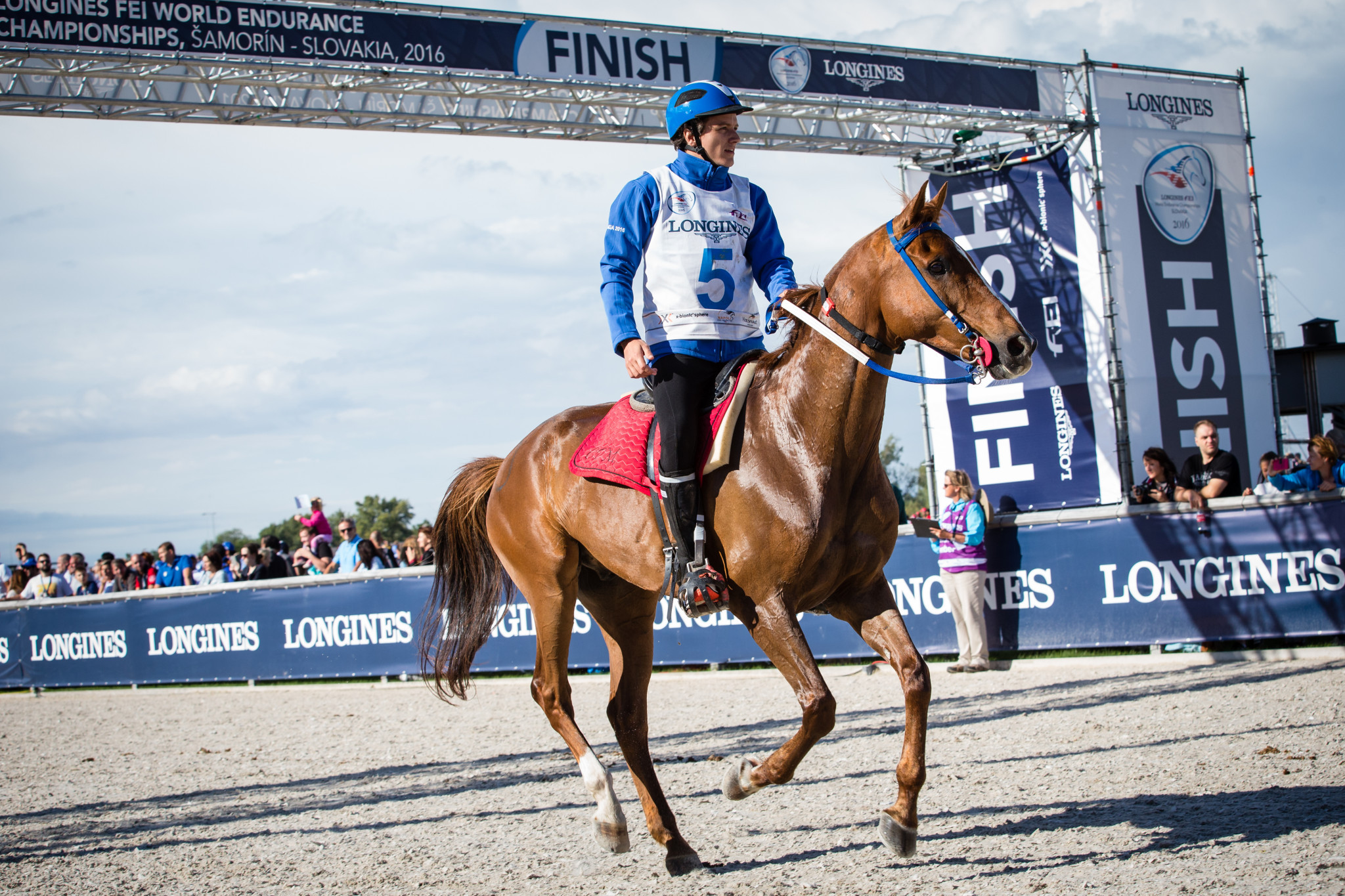There are calls for endurance racing to focus again on horsemanship and the partnership between horse and human and for there to be less emphasis on winning ©FEI
