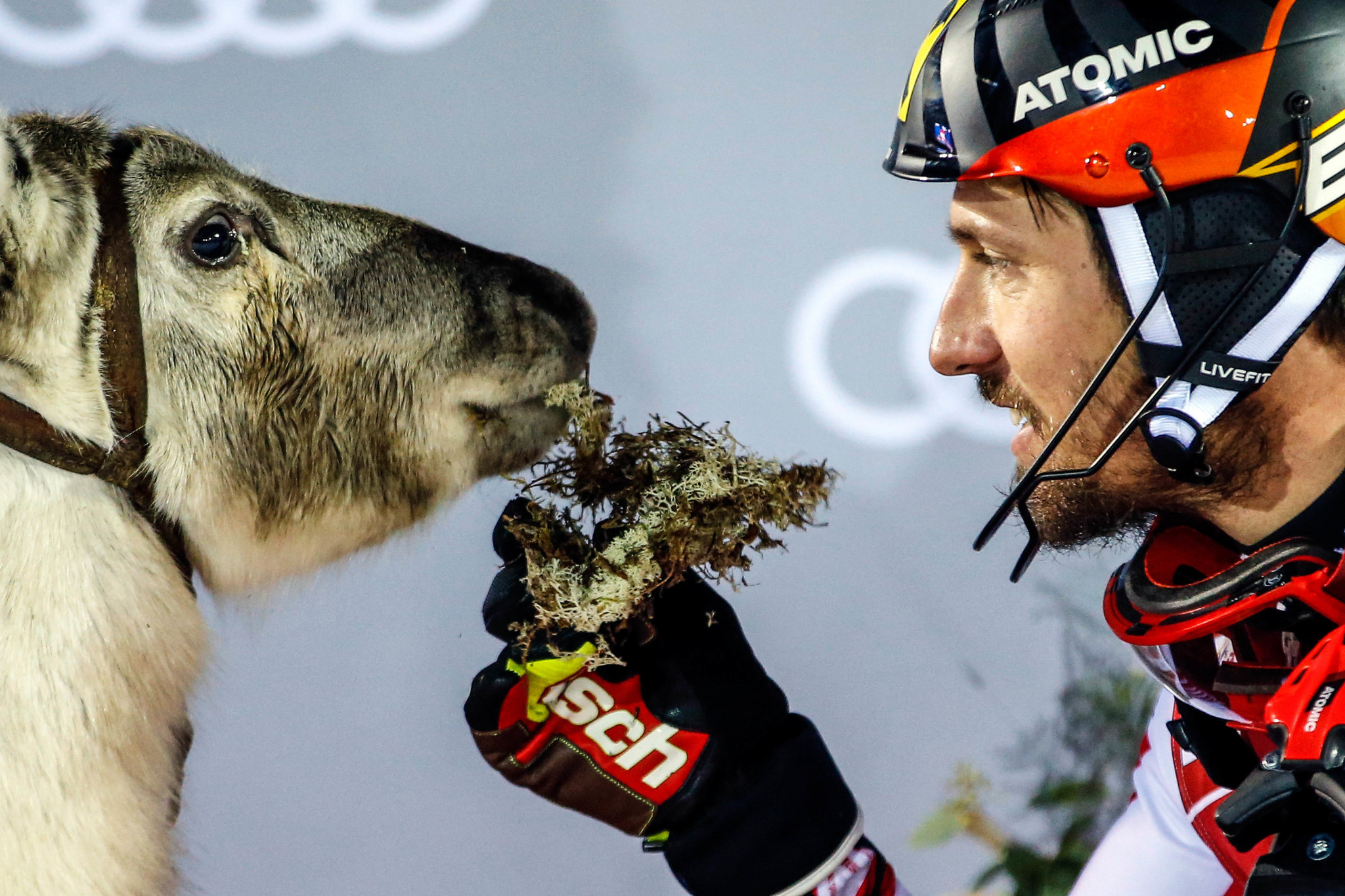 Levi World Cup win means Hirscher keeps up with Shiffrin in the reindeer stakes