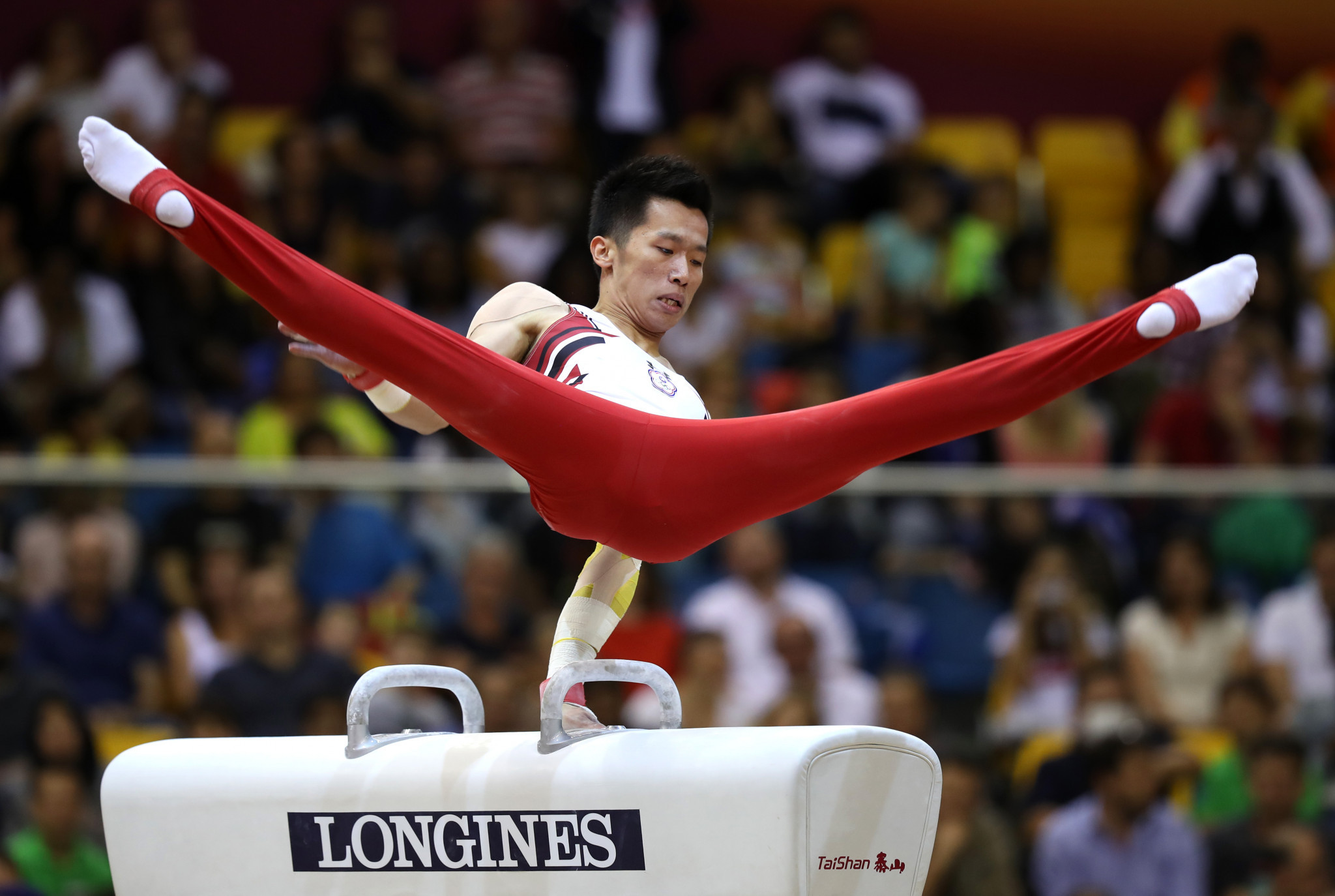 Chinese Taipei's Chih Kai Lee took the gold medal on the pommel horse at the Individual Apparatus World Cup ©Getty Images