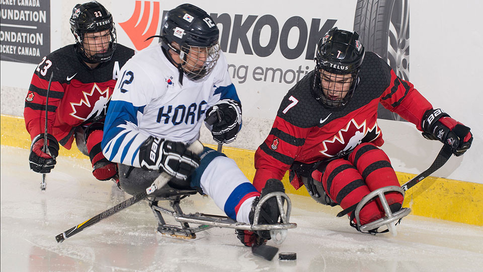 Hosts Canada off to a flyer at Para Hockey Cup