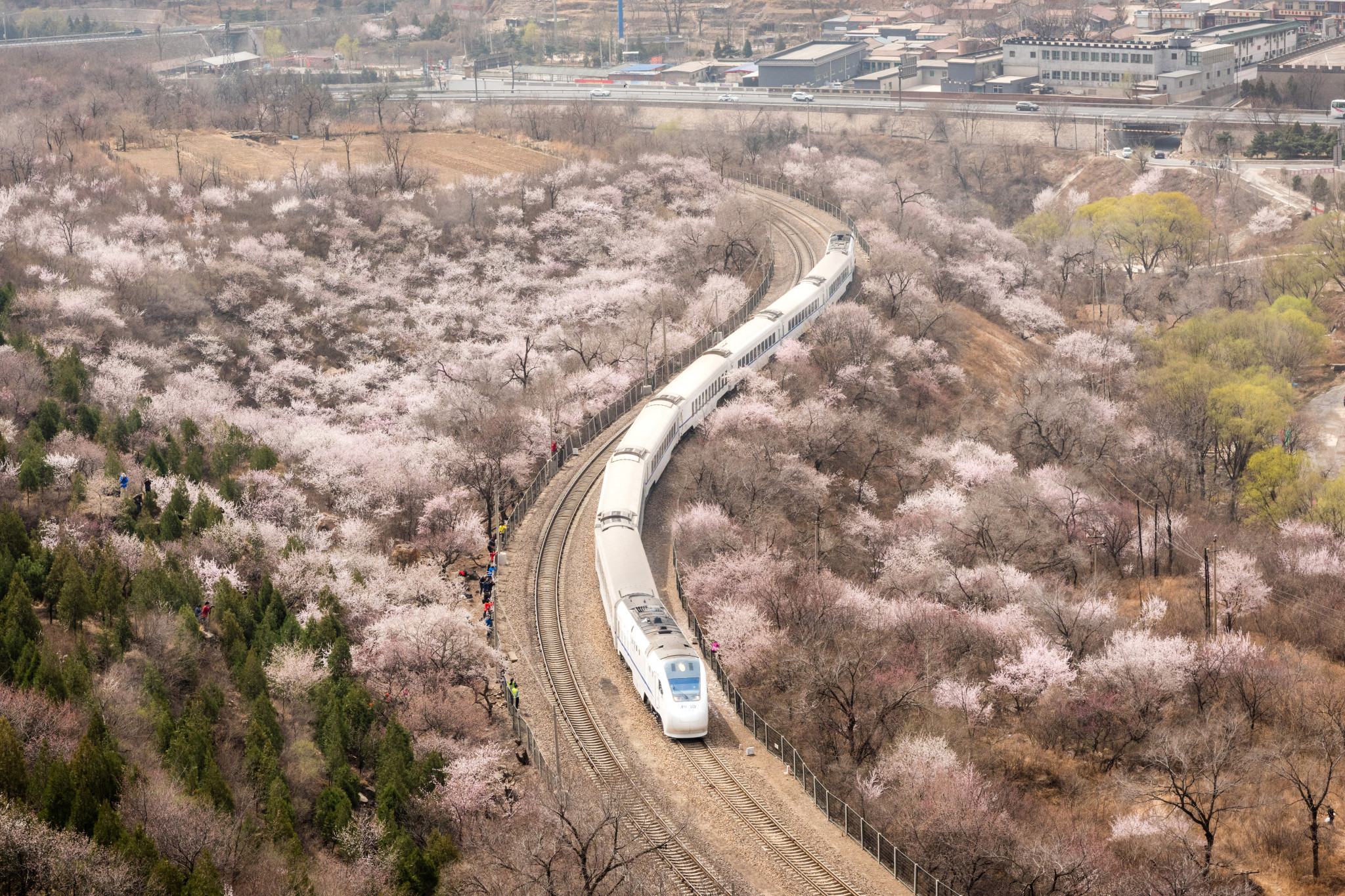 Boost for Beijing 2022 as construction begins on high-speed railway linking host city and Zhangjiakou