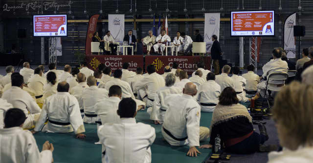 A seminar for instructors and high-graded judoka was held in Toulouse as part of the Japonismes 2018 jita-kyoei project ©IJF