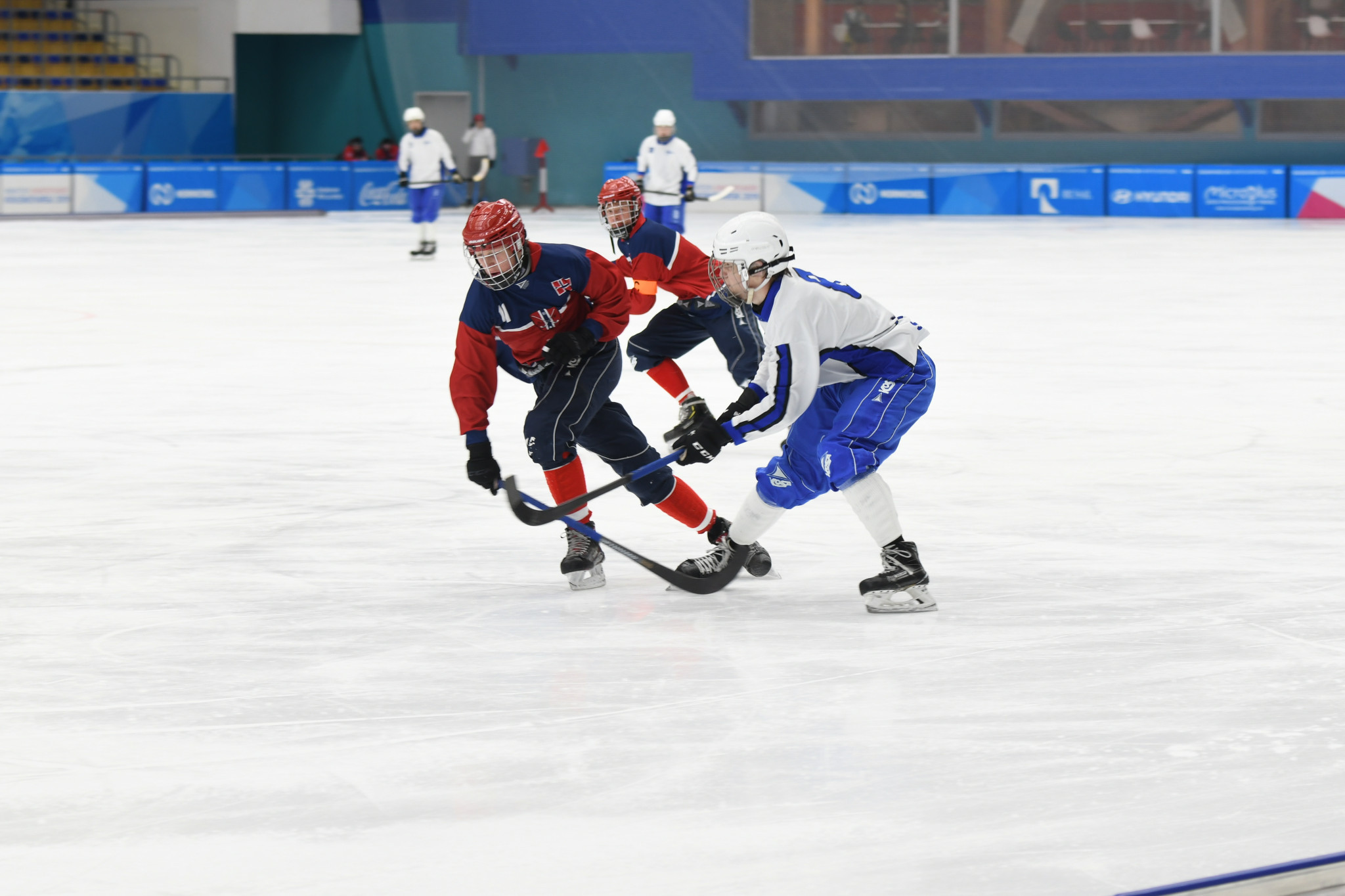 The competition took place at the Yenisei Ice Stadium ©Krasnoyarsk 2019