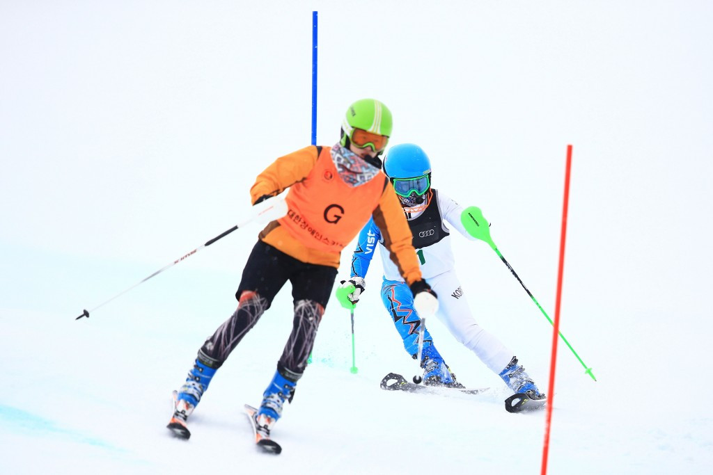 IPC Alpine Skiing aim to improve visually impaired classification system