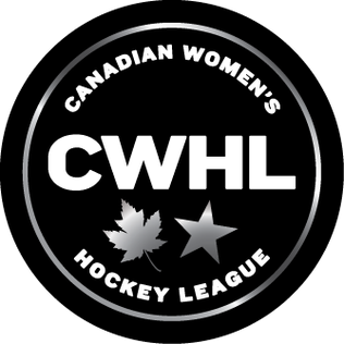 "Canadian Women's Hockey League collapses amid ""economically unstable"" business model"