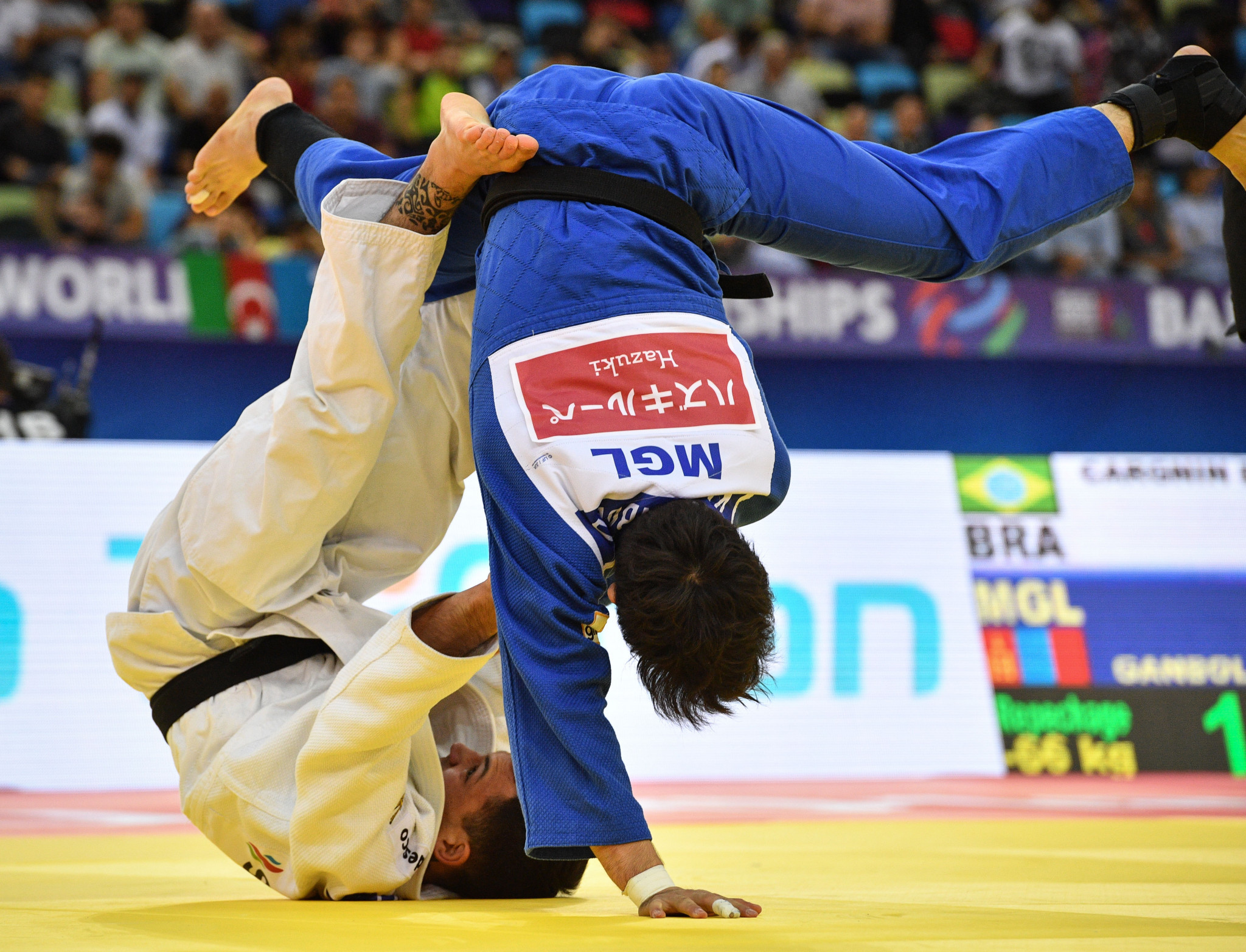 Brazil claim two gold medals on opening day of Pan American Senior Judo Championships