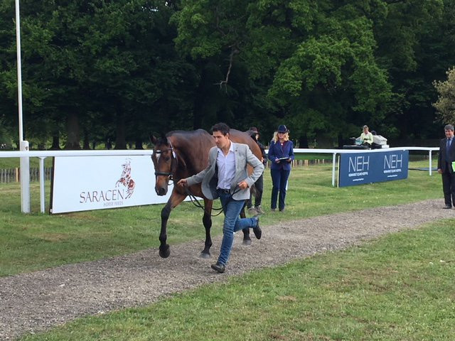 The season-opener of the FEI Eventing Nations Cup is taking place at Houghton Hall ©Twitter