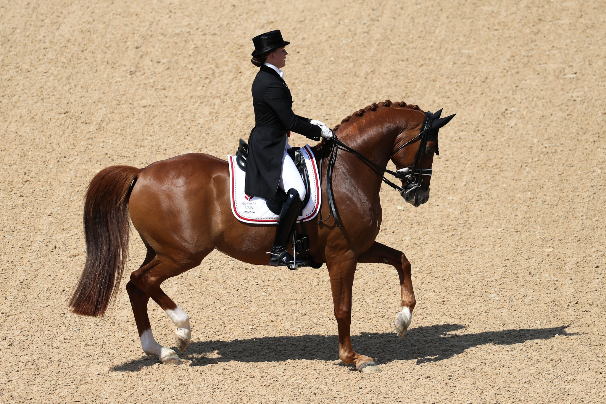 Measures in Hangzhou will look to protect horses during the 2022 Asian Games ©Getty Images