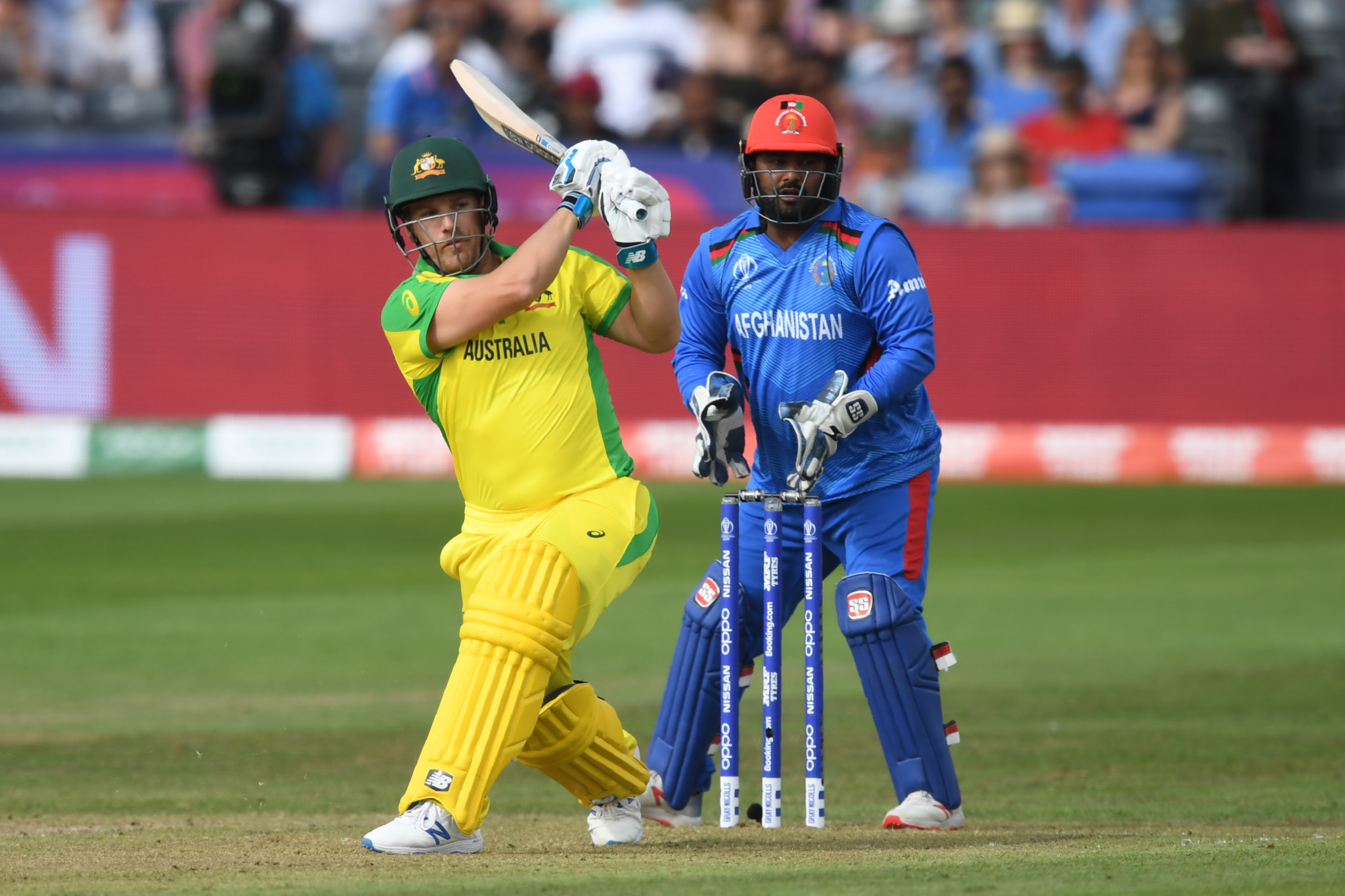 Australia and New Zealand begin Cricket World Cup campaigns with comfortable wins