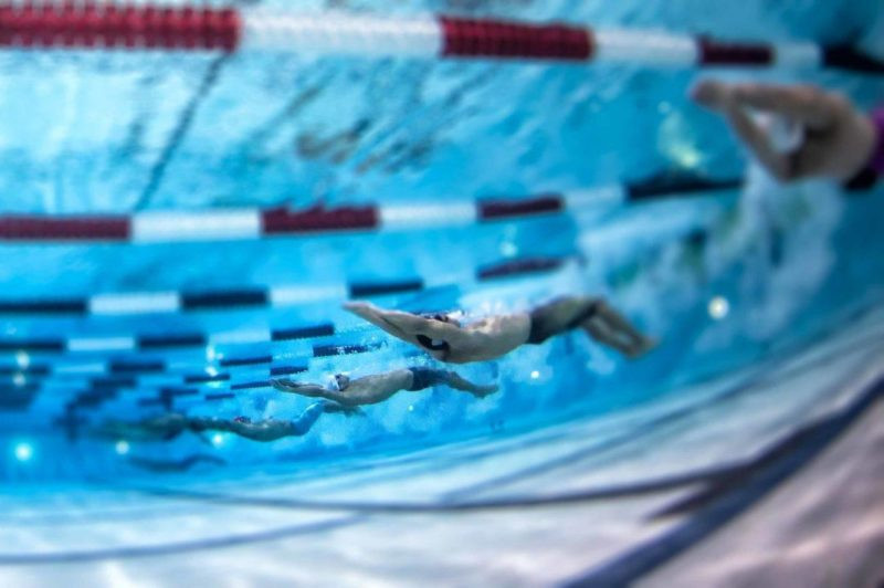 The International Swimming League is due to begin in October ©ISL