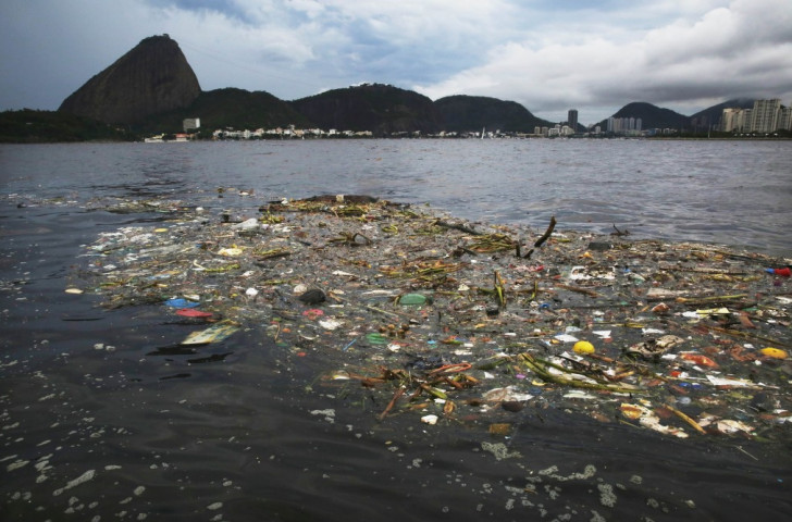 André Corrêa  has attempted to dispel fears surrounding the state of Guanabara Bay by jumping into the water during a television interview ©Getty Images