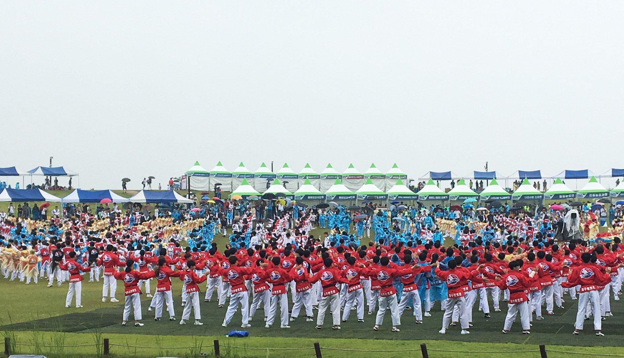 Taekwondo athletes perform flash mob at festival focused on world peace