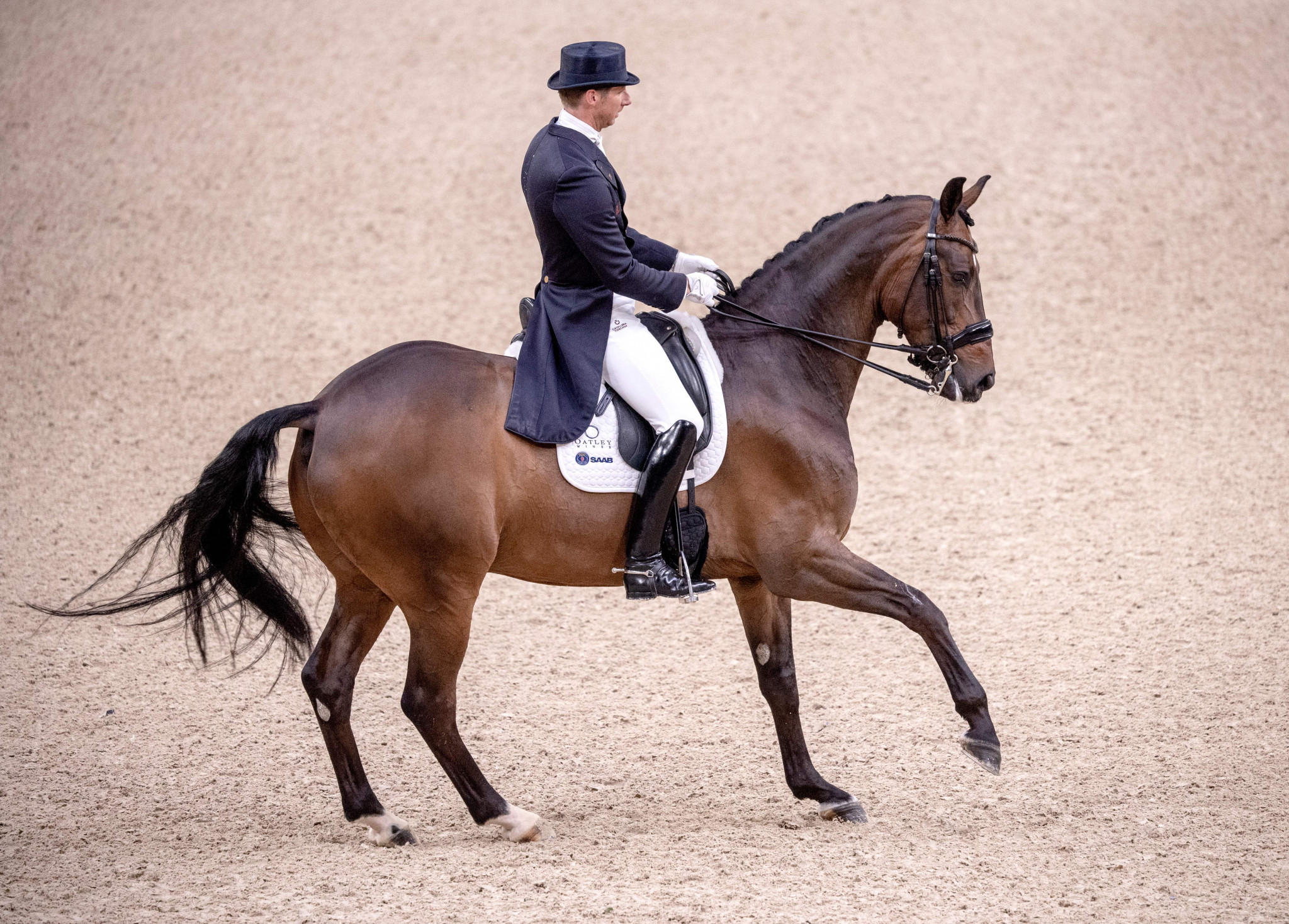 Sweden triumph on home soil at FEI Dressage Nations Cup