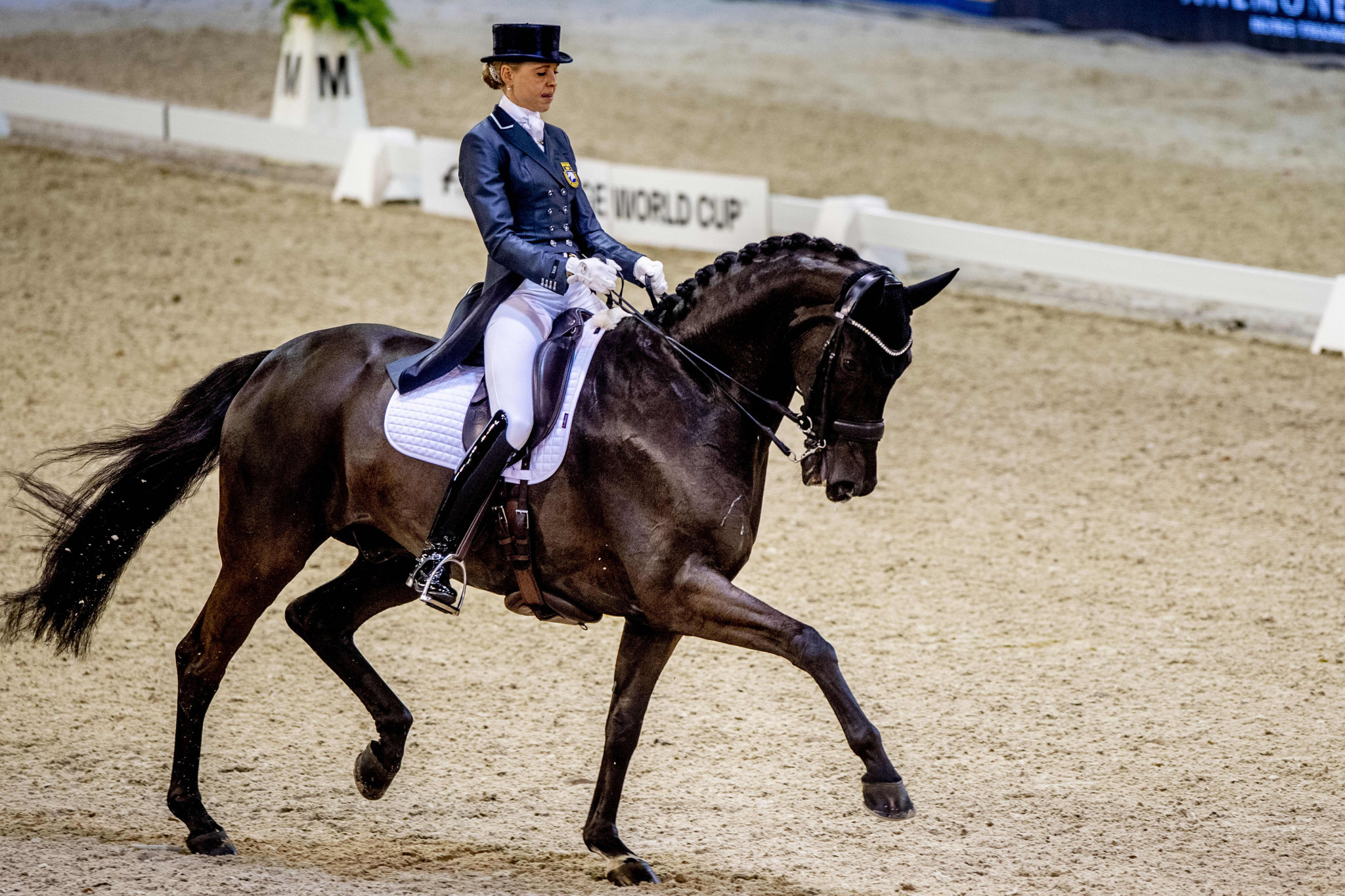 Sweden seek to maintain overall lead as FEI Dressage Nations Cup moves on to Aachen