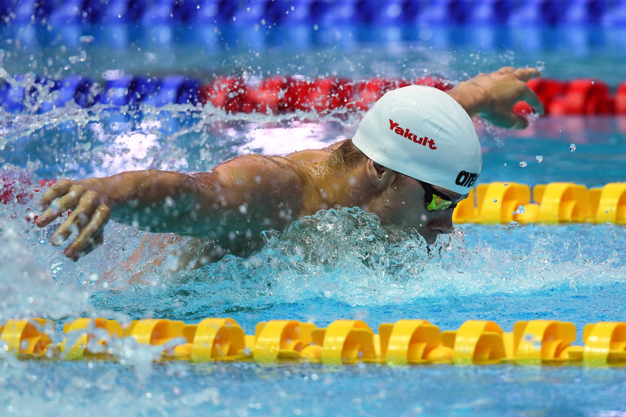 The Hungarian has been competing at the FINA World Aquatics Championships in Gwangju ©Getty Images