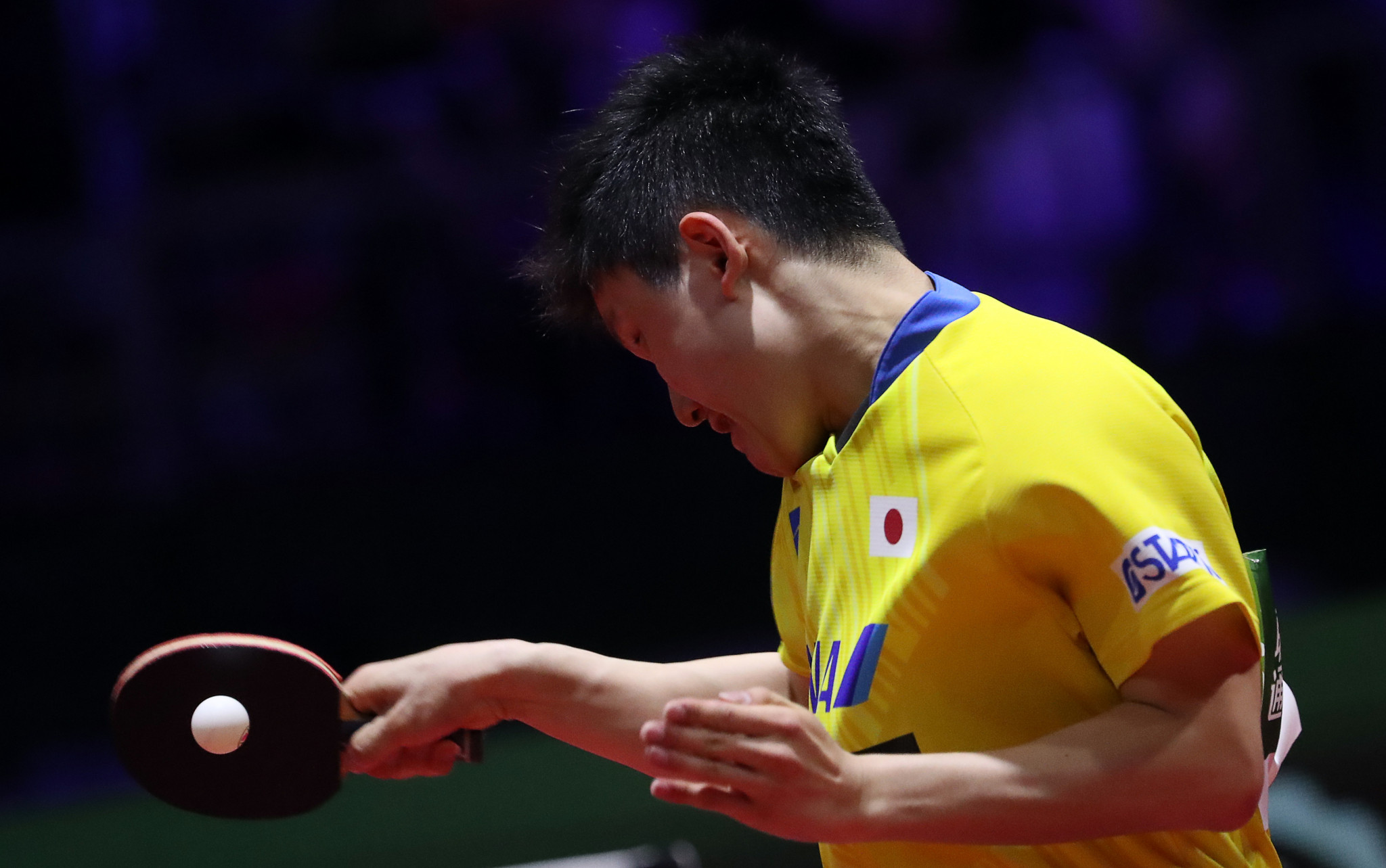 Harimoto looking to continue winning feeling at ITTF Czech Open