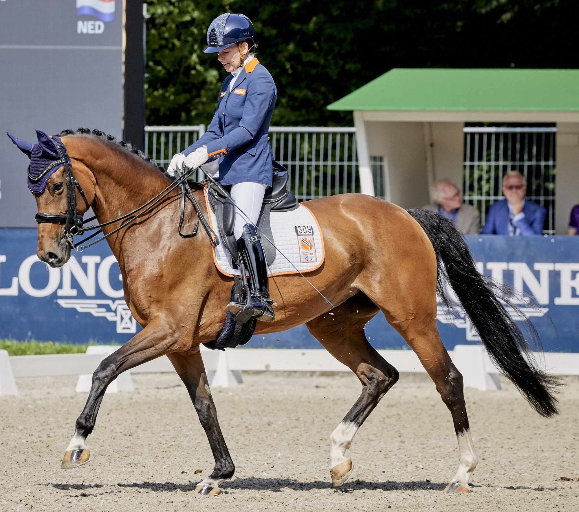 Dokkan puts Norway in control at FEI Para-Dressage European Championships