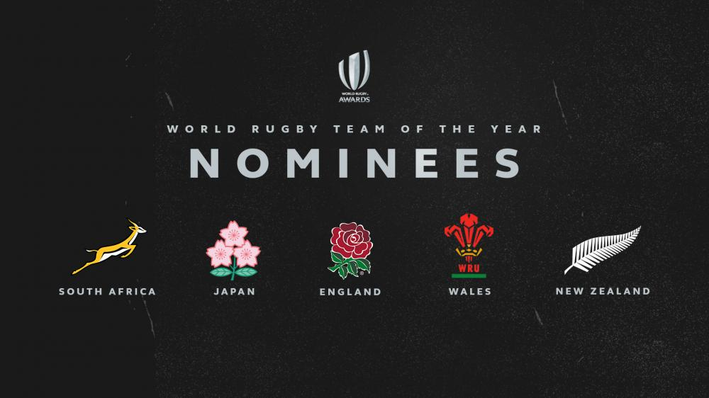 World Cup finalists among nominees for World Rugby Team of the Year