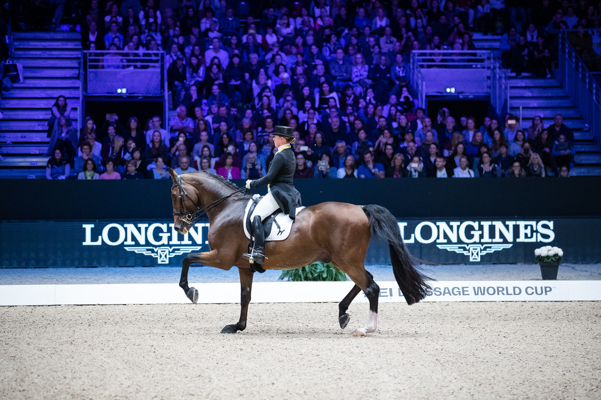 Werth wins Dressage World Cup title in Lyon for third time in a row