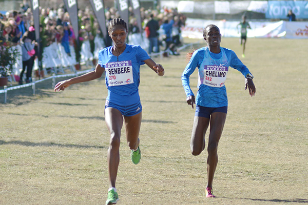 Ethiopia's Senbere Teferi will be chasing a fourth victory at Cross de Atapuerca as the new IAAF Cross Country Permit series starts ©IAAF