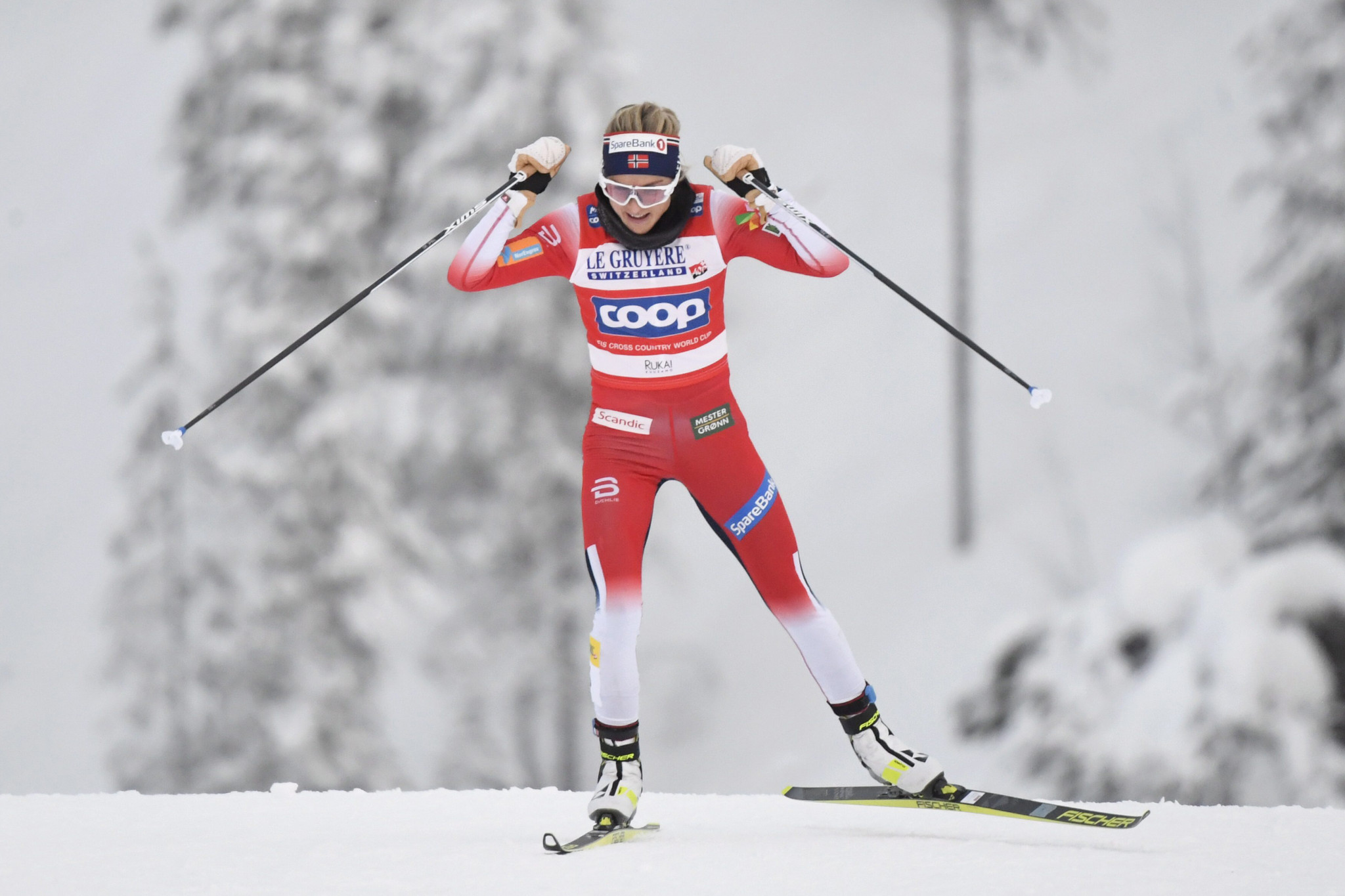 Therese Johaug eased to victory in the women's pursuit event in the FIS Cross-Country World Cup at Ruka ©Getty Images